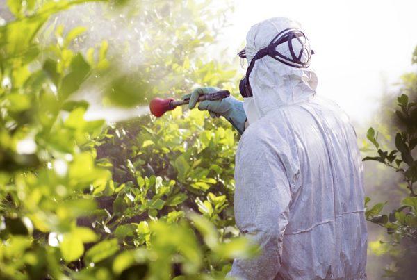 buenas prácticas agricultura limpieza equipos aplicación productos fitosanitarios aepla