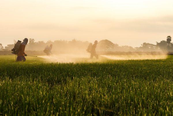 productos fitosanitarios ilegales aepla