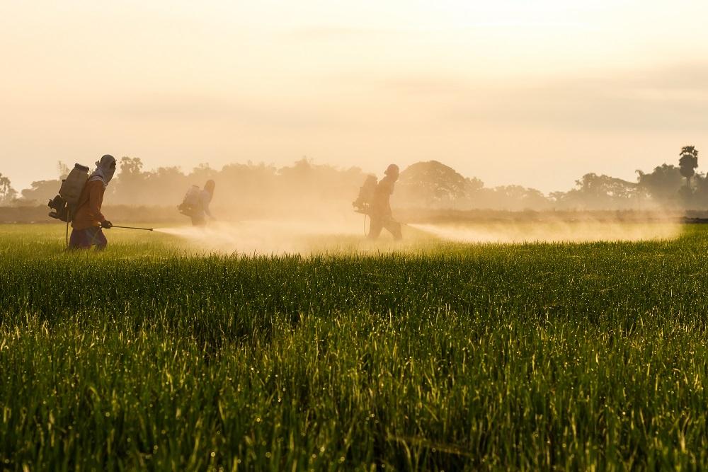 productos fitosanitarios ilegales riesgos seguridad alimentaria sanidad vegetal medio ambiente aepla