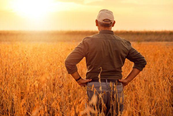 pasaporte fitosanitario prevención de plagas seguridad alimentaria sanidad vegetal productos fitosanitarios aepla