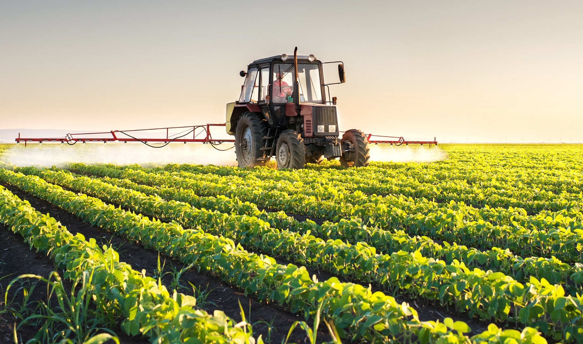 Agricultura responsable: Aplicación de tratamientos fitosanitarios a terceros