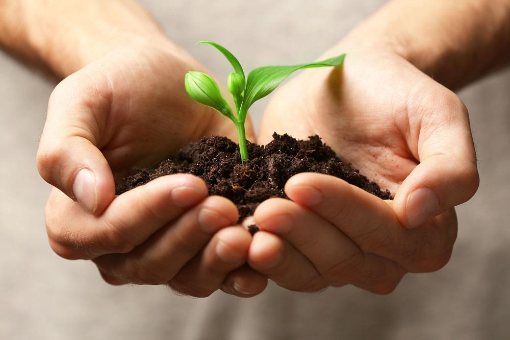 agricultura desarrollo rural empleo españa vaciada aepla
