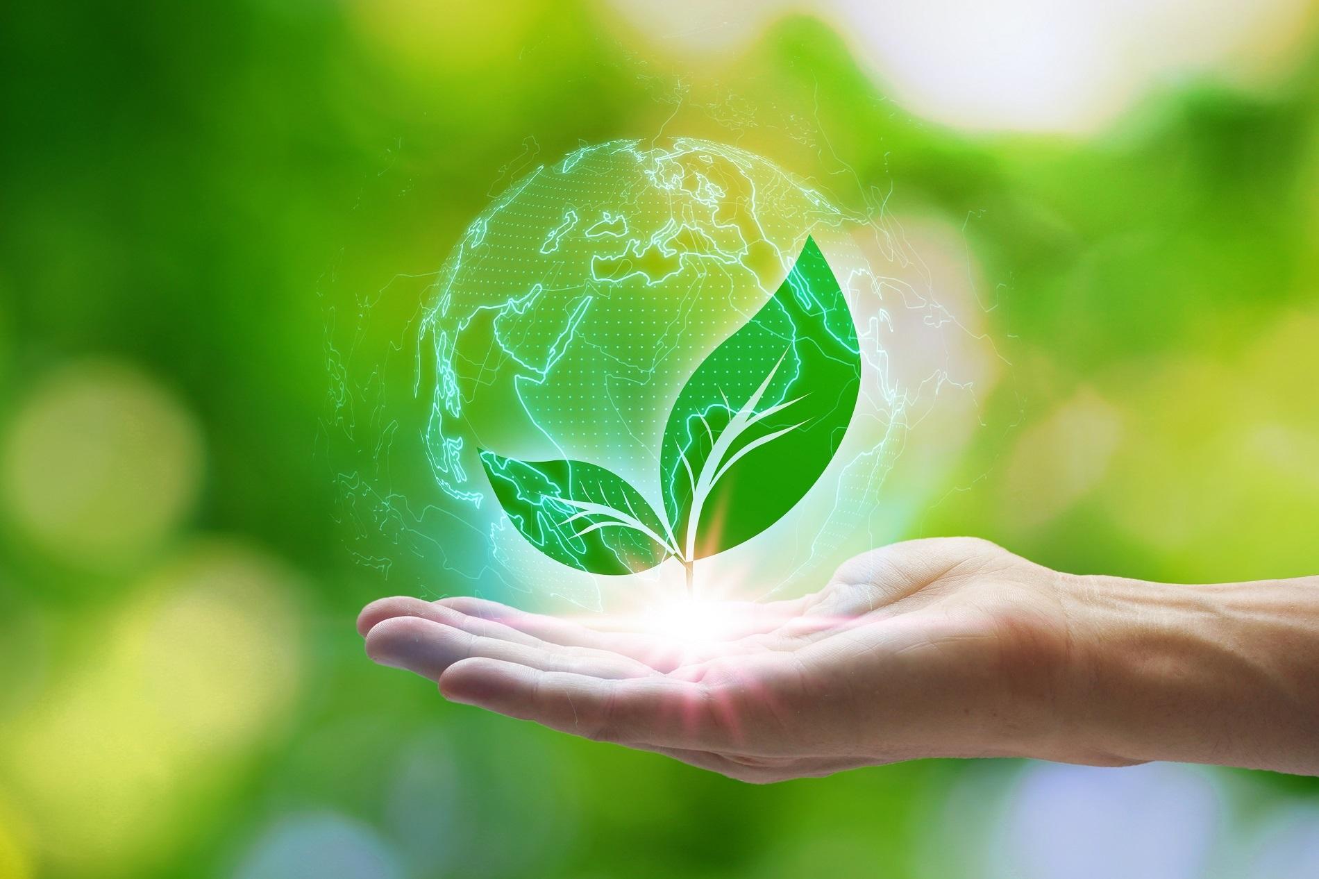 Buenas prácticas agrícolas: Reciclaje de residuos