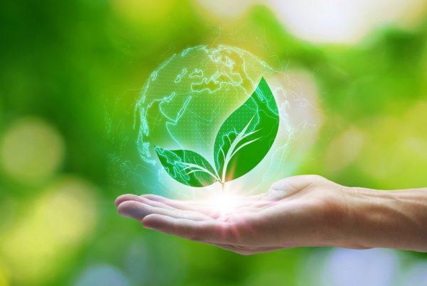 reciclaje de residuos buenas prácticas agrícolas agricultura aepla