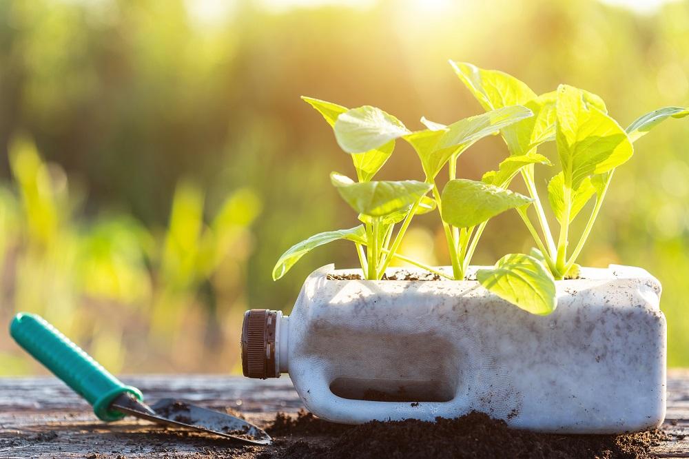 reciclaje de residuos buenas prácticas agrícolas medio ambiente seguridad alimentaria sigfito aepla