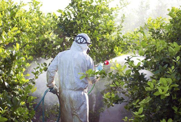 Curso Básico Aplicador de Productos Fitosanitarios competencia profesional seguridad sanidad vegetal agricultura aepla