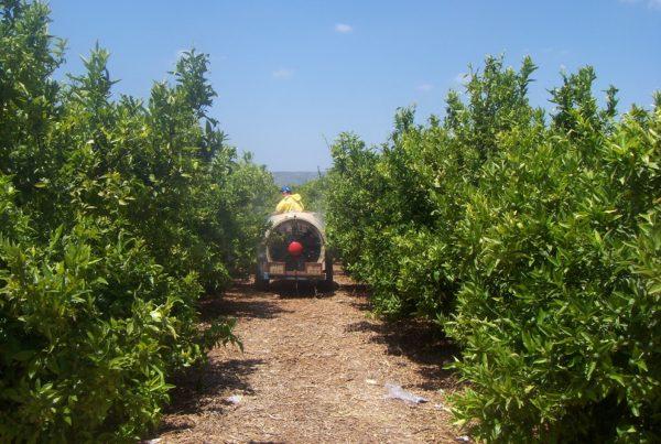 importancia buenas prácticas agricolas futuro agricultura sanidad vegetal aepla