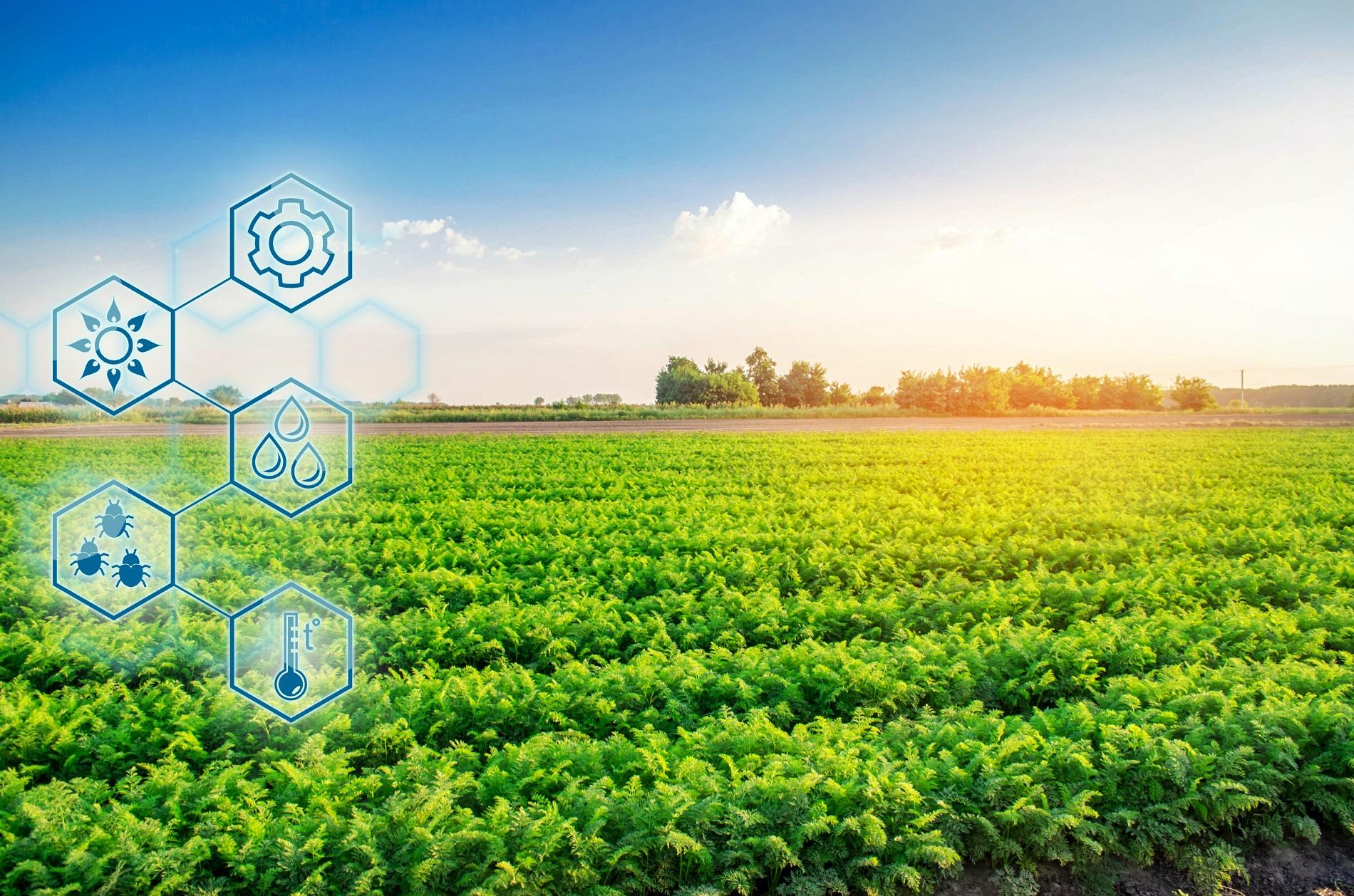 La agrotecnología como motor de modernización y mejora de la agricultura tradicional