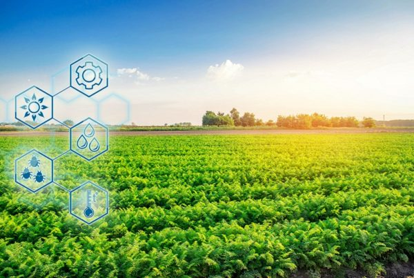 agrotecnología innovación agrícola agricultura de precisión agricultura sanidad vegetal aepla