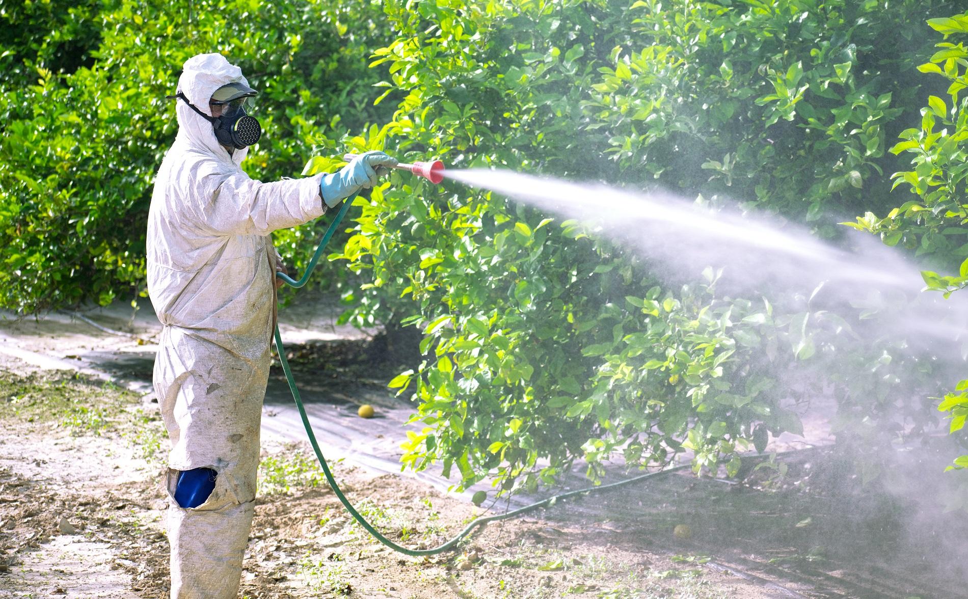 ¿Cómo incrementar tu seguridad en el almacenamiento de productos fitosanitarios?