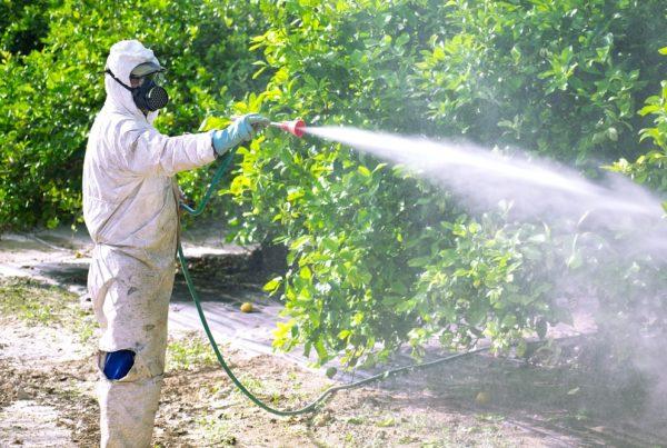 seguridad almacenamiento fitosanitarios prevención equipos de protección individual EPI buenas prácticas agrícolas tratamiento fitosanitarios agricultura sanidad vegetal aepla