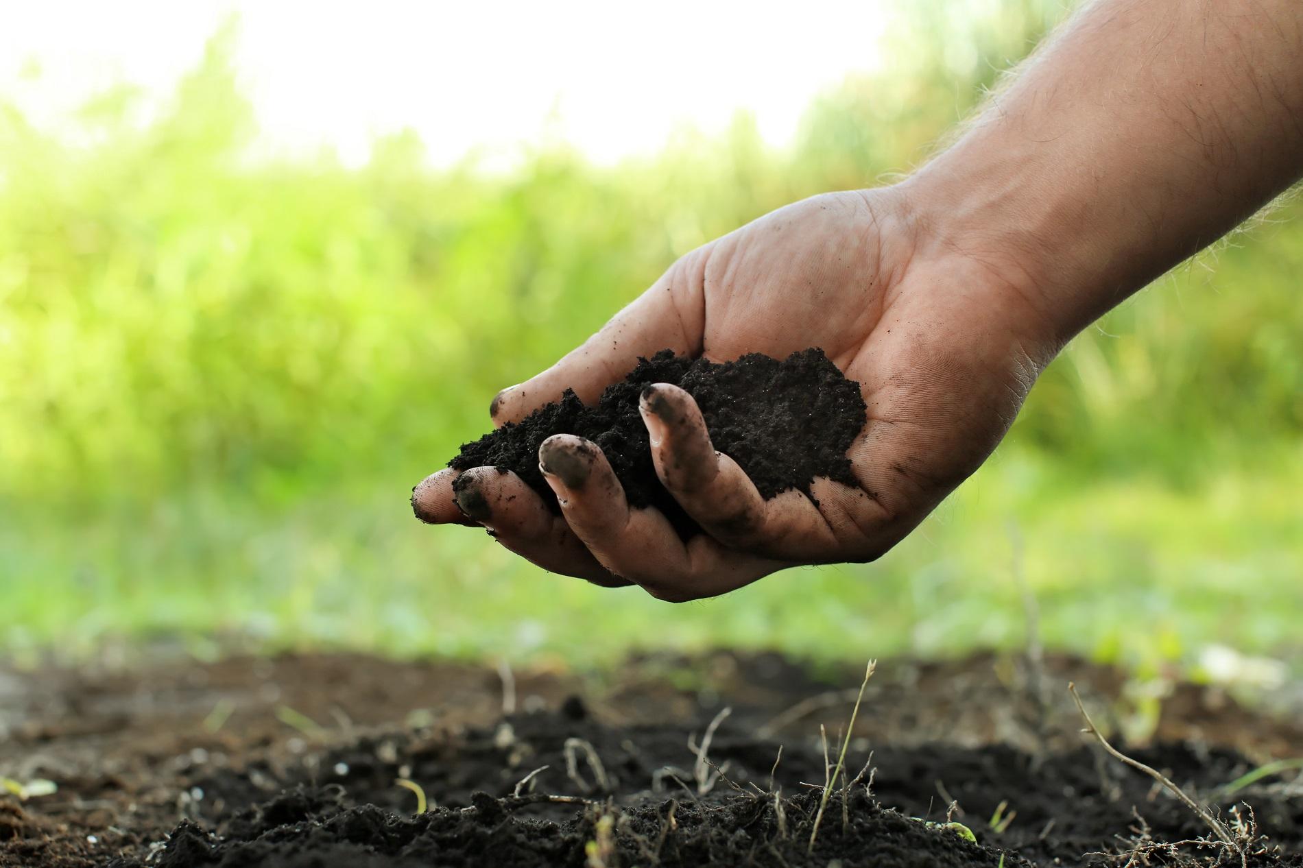 Buenas prácticas agrícolas: Prevención de la erosión del suelo