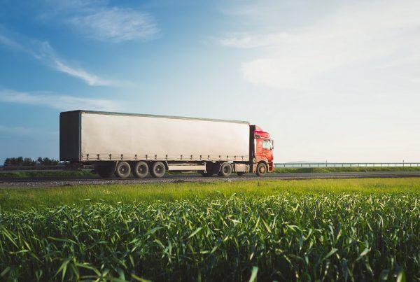 tolerancia en las importaciones comercio internacional sanidad vegetal productos fitosanitarios límite máximo de residuos seguridad alimentaria agricultura aepla
