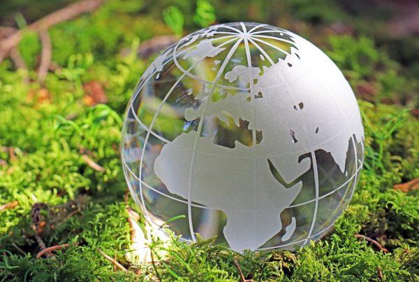 alimentación sostenible sostenibilidad salud sanidad vegetal agricultura seguridad alimentaria aepla