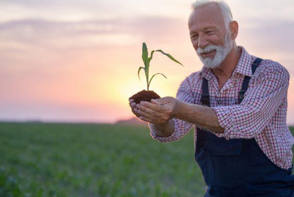 cultivos sanos agricultura sostenible sanidad vegetal sostenibilidad aepla