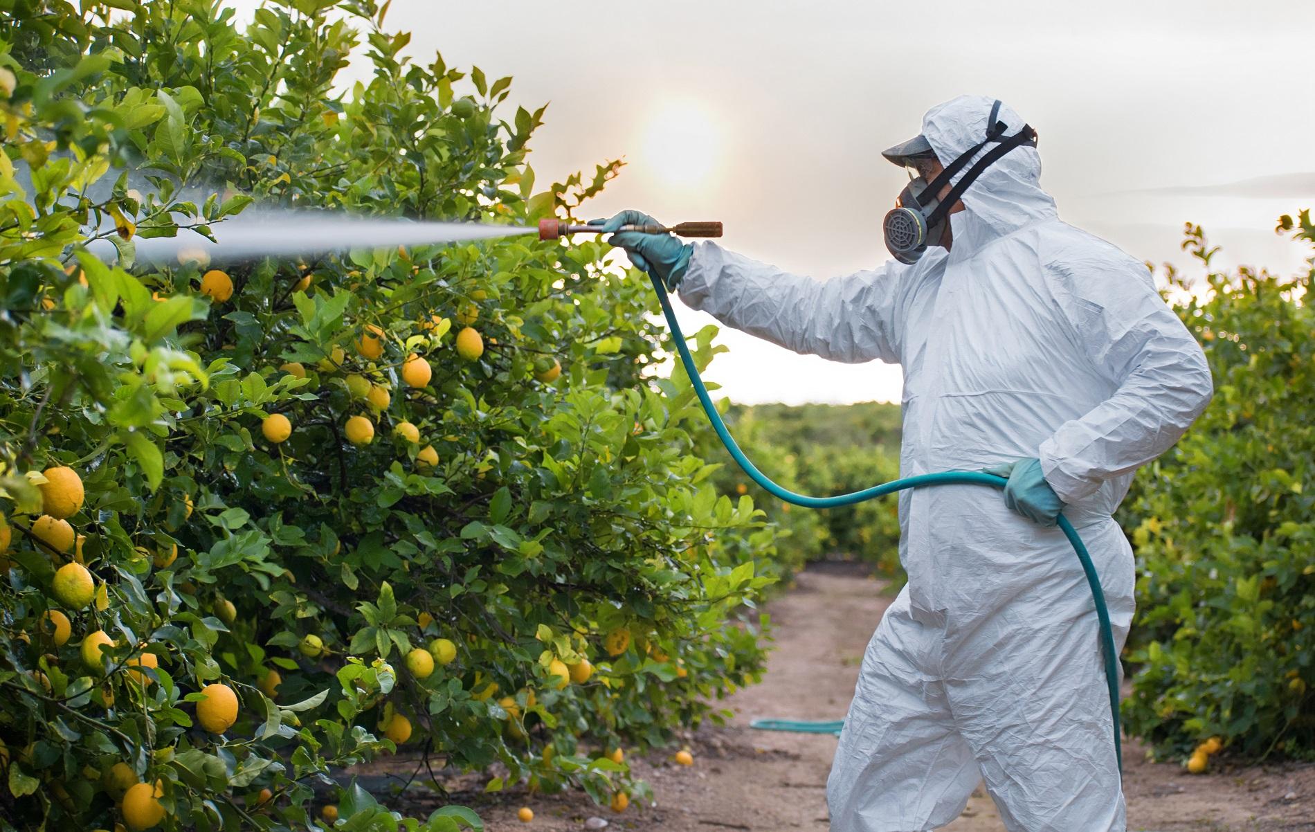 Por tu seguridad y la de todos, evita el uso de fitosanitarios ilegales