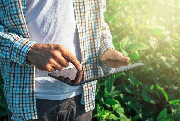 buenas prácticas agrícolas cuaderno de explotación productos fitosanitarios sanidad vegetal agricultura aepla