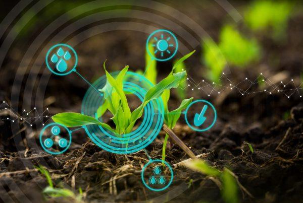 innovación en sanidad vegetal protección agricultura productos fitosanitarios aepla
