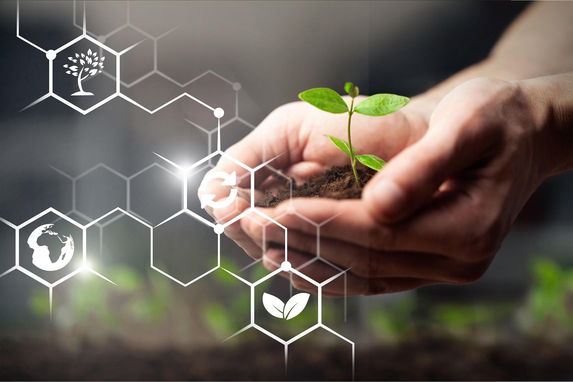 Productos fitosanitarios: el largo (y seguro) camino desde el laboratorio al campo