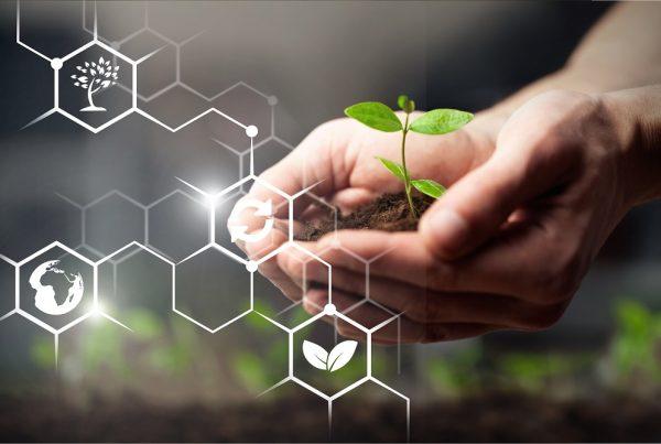 productos fitosanitarios i+d+i investigación y desarrollo laboratorio campo innovación sanidad vegetal agricultura aepla