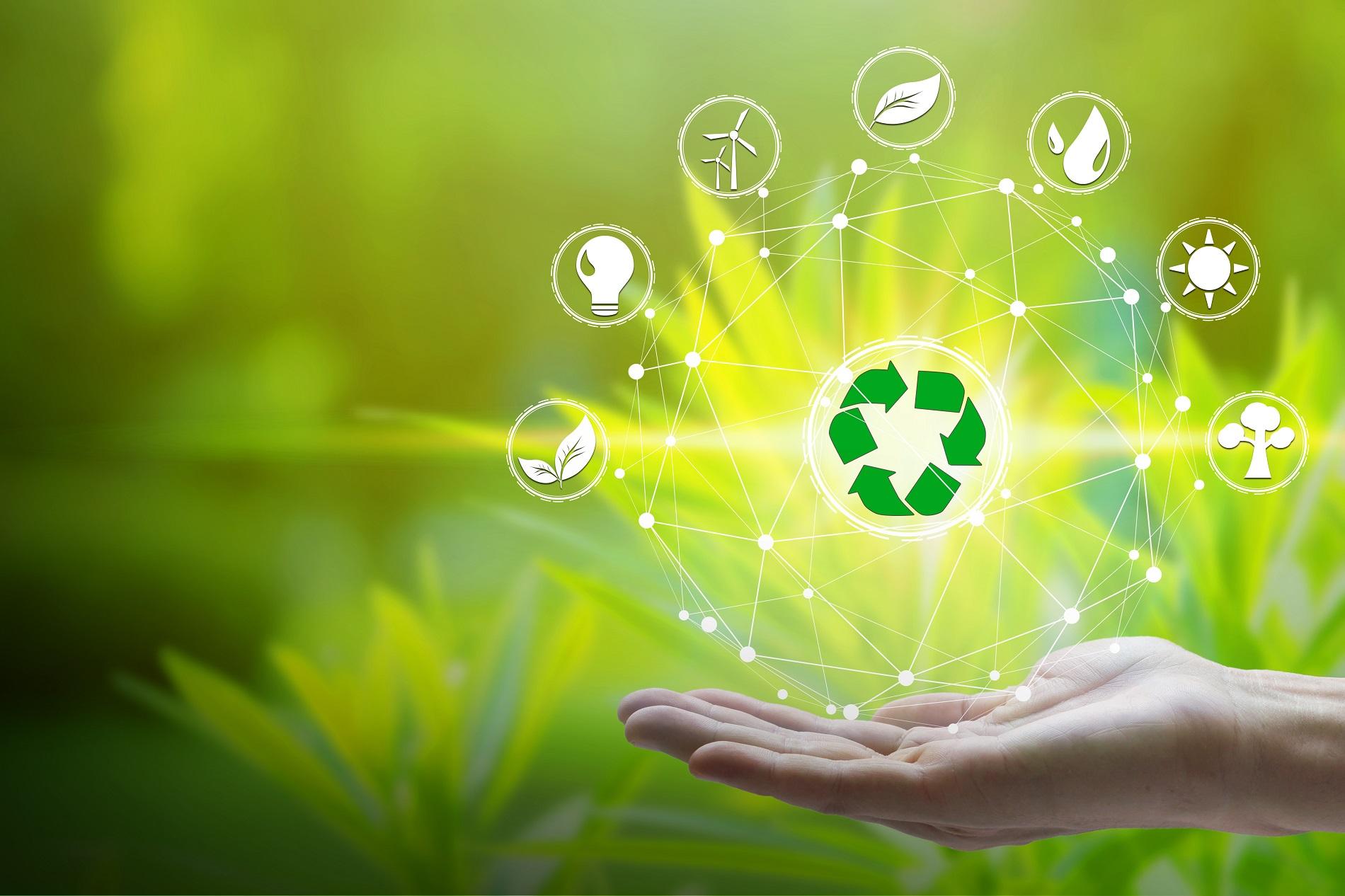¿Por qué la economía circular es clave para avanzar hacia una agricultura más sostenible?