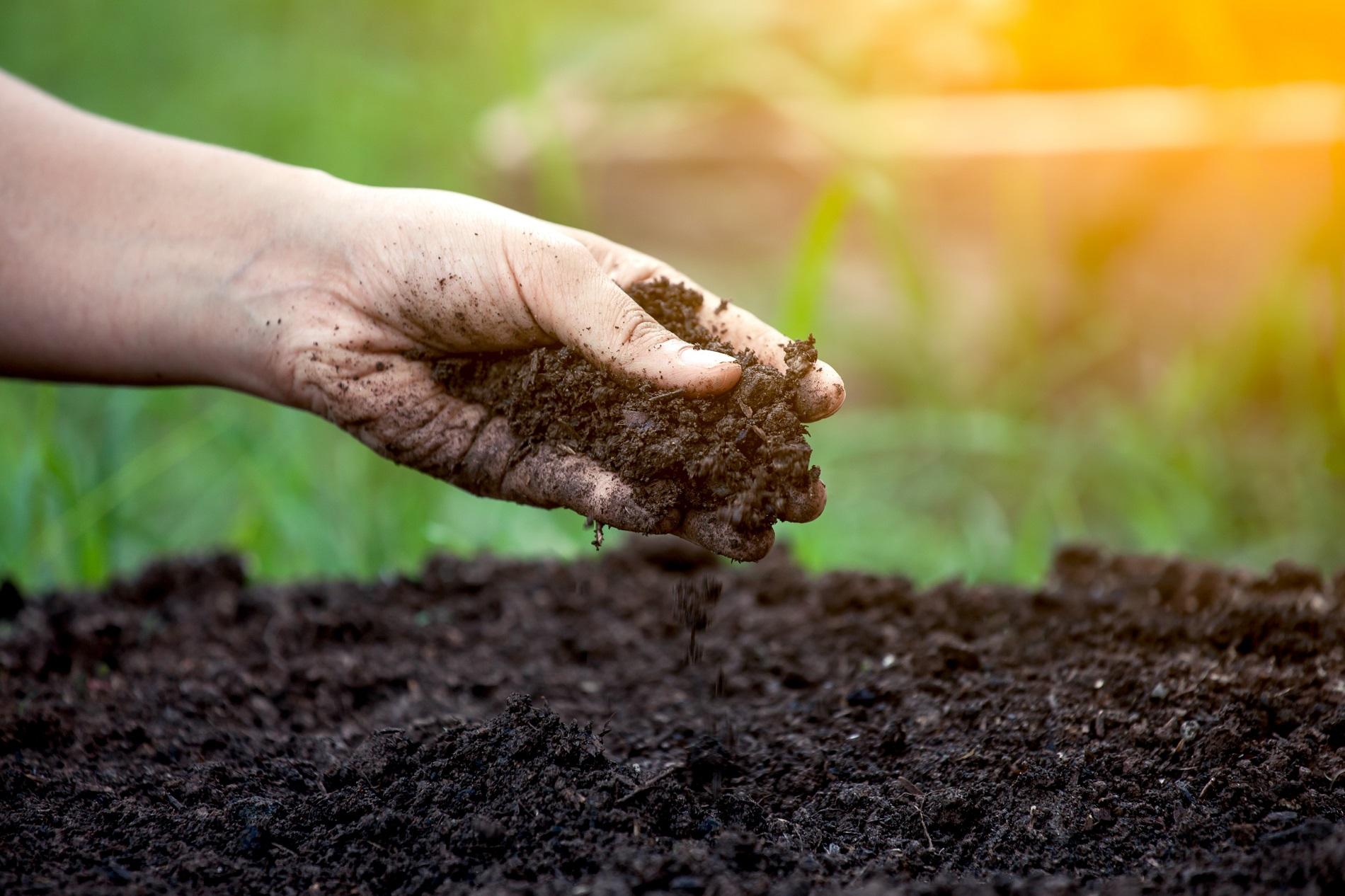 Buenas prácticas agrícolas: Conservación del suelo agrícola