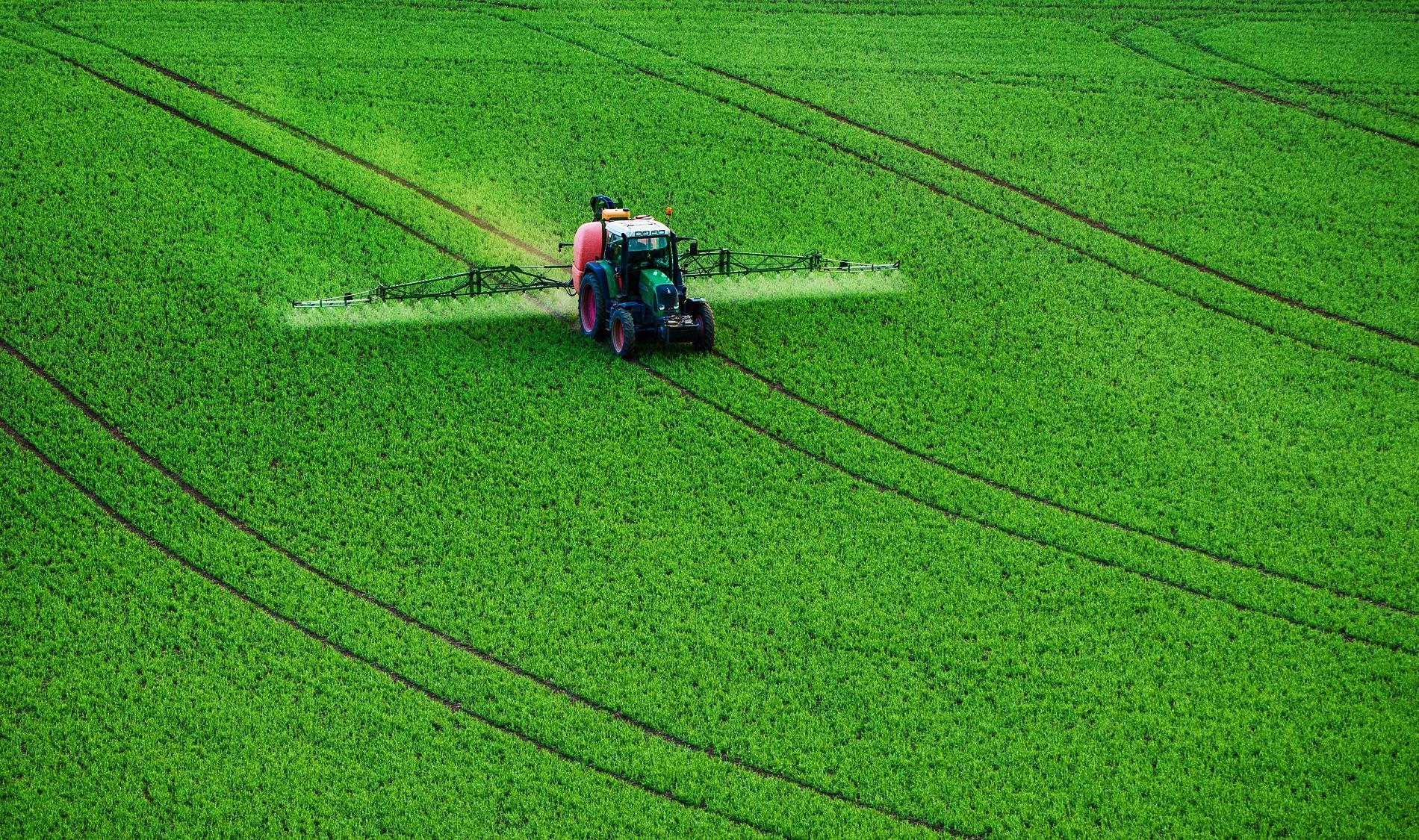 ¿Qué puedes hacer para combatir la aparición de plagas y enfermedades en tus cultivos?