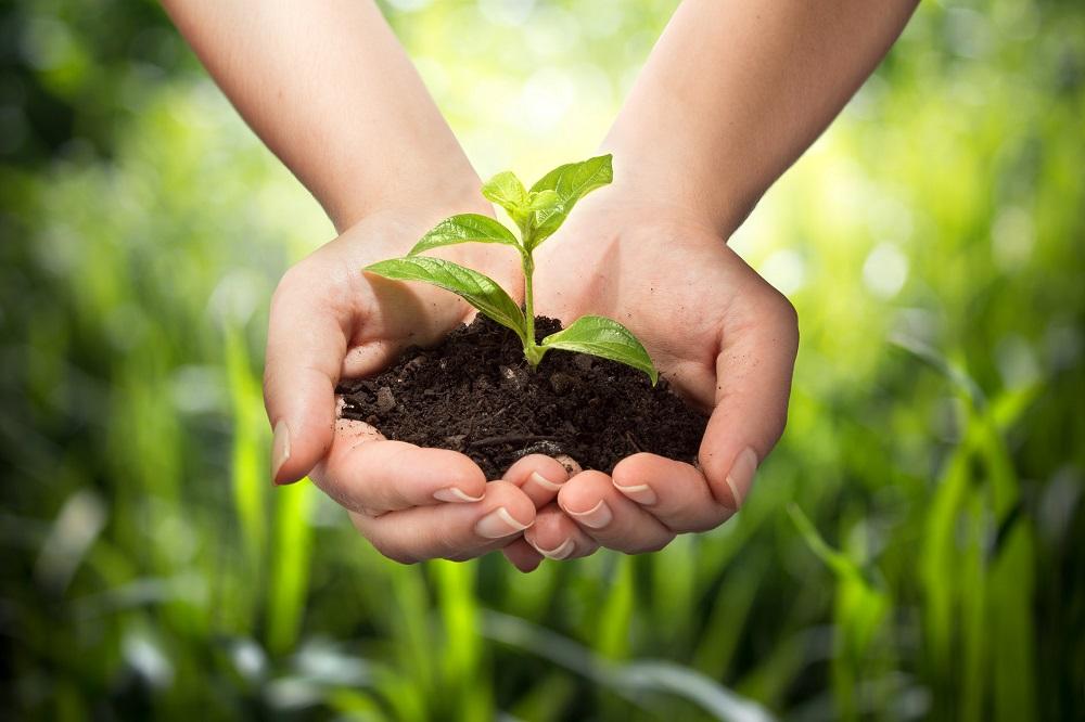 Pacto Verde Europeo futuro sector agrícola consenso Unión Europea Política Agraria Común agricultura sanidad vegetal sostenibilidad aepla