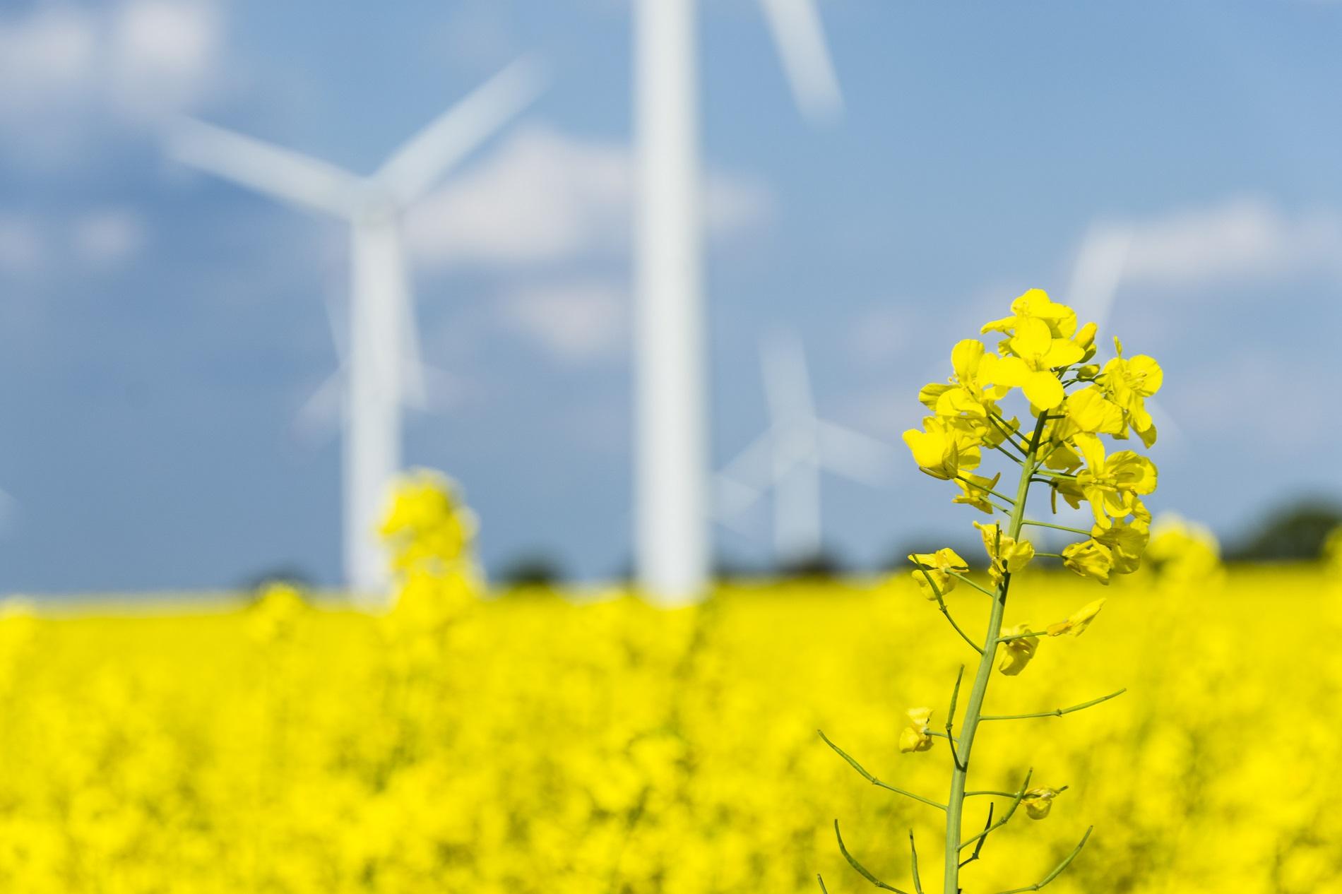 5 medidas sostenibles para contribuir a la reducción de emisiones en tu actividad agrícola