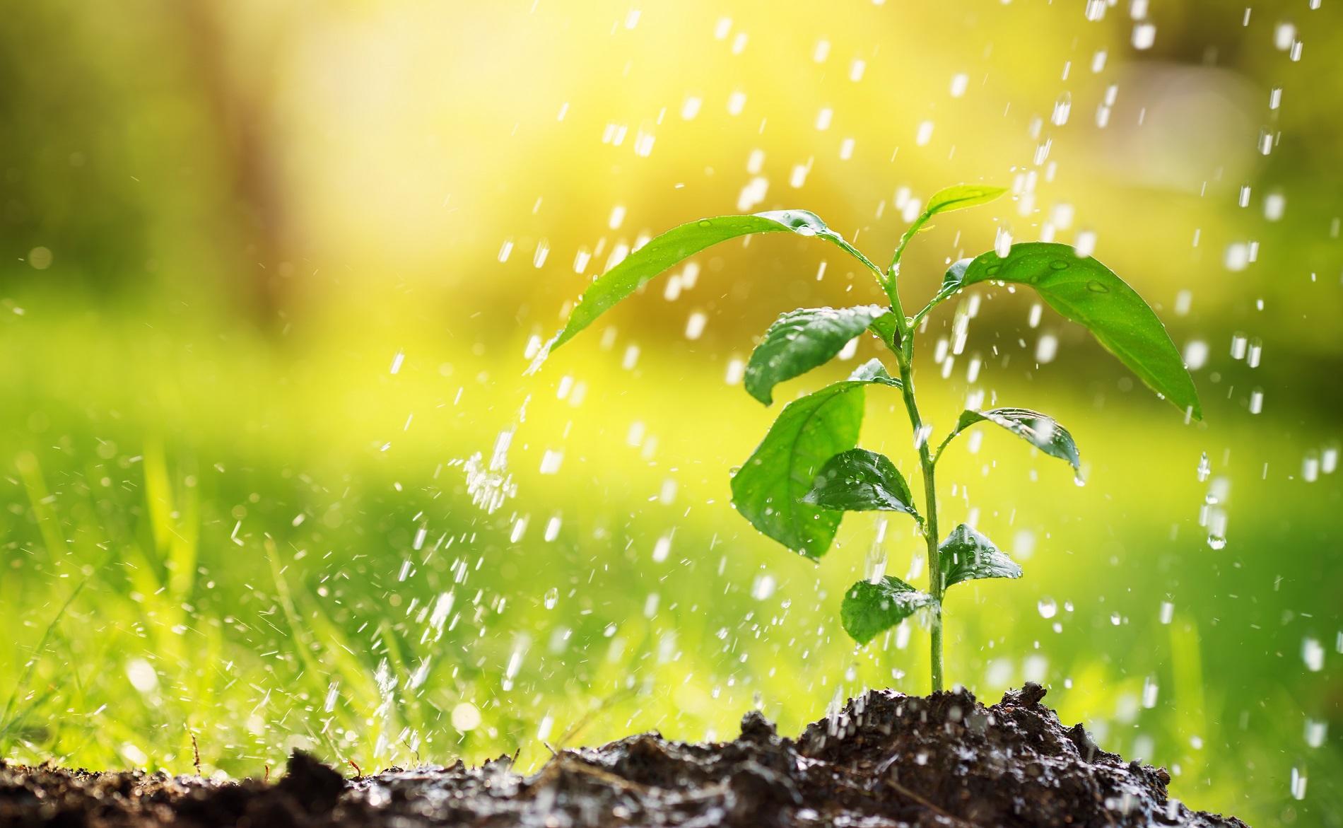 ¿A qué elementos debes prestar una mayor atención para reducir el riesgo de contaminación de aguas?