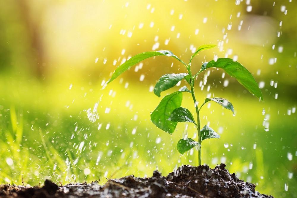 reducir riesgo contaminación aguas buenas prácticas agrícolas prevención vertido accidental protección del entorno sanidad vegetal agricultura aepla