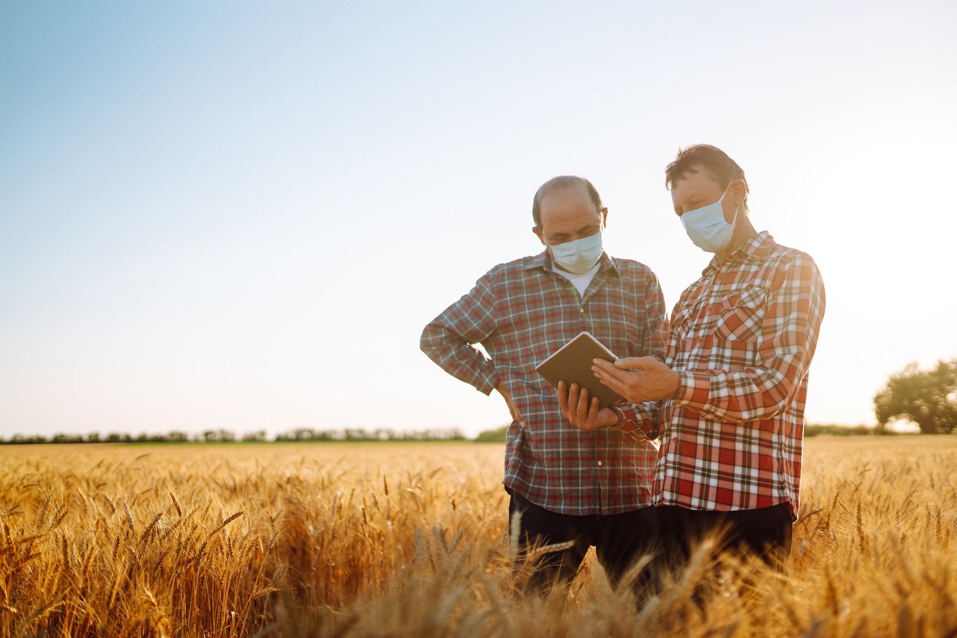 ¿Qué efectos directos está teniendo la pandemia de Covid-19 sobre la agricultura?