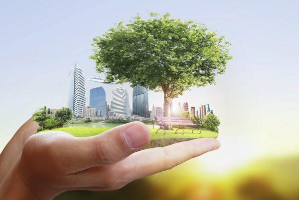 espacios verdes sostenibilidad cambio climático huertos urbanos espacios saludables áreas verdes aepla