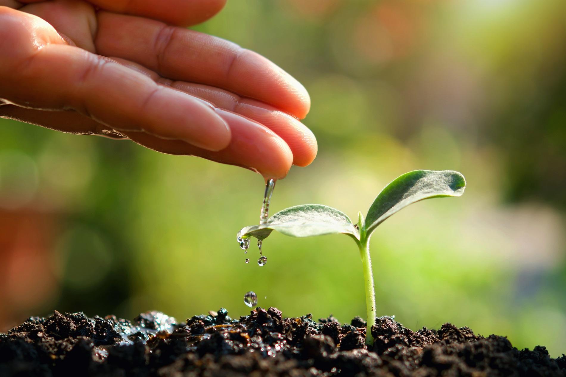6 medidas imprescindibles para la protección de masas de agua en tu parcela agrícola
