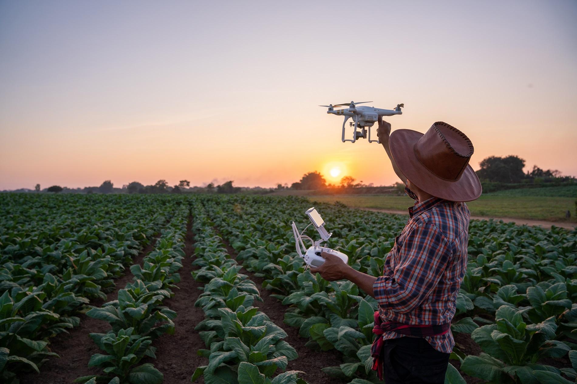 Digitalización de la agricultura: el reto de aunar innovación y tradición
