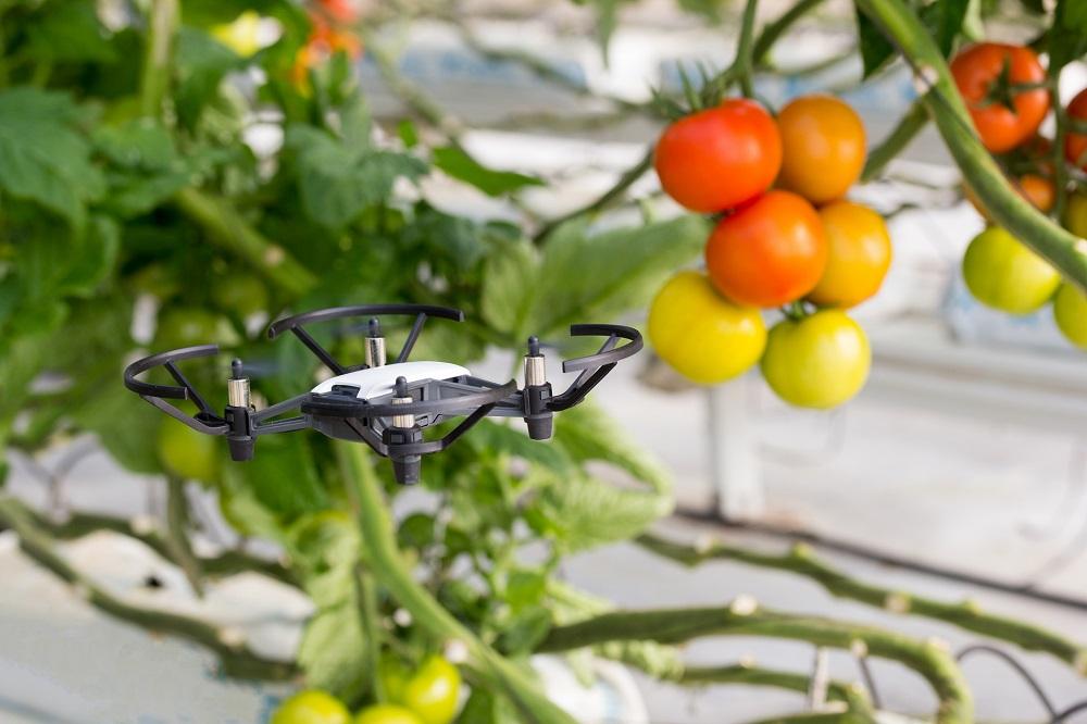 ¿Qué puede aportar el uso de drones al desarrollo y modernización de la agricultura?