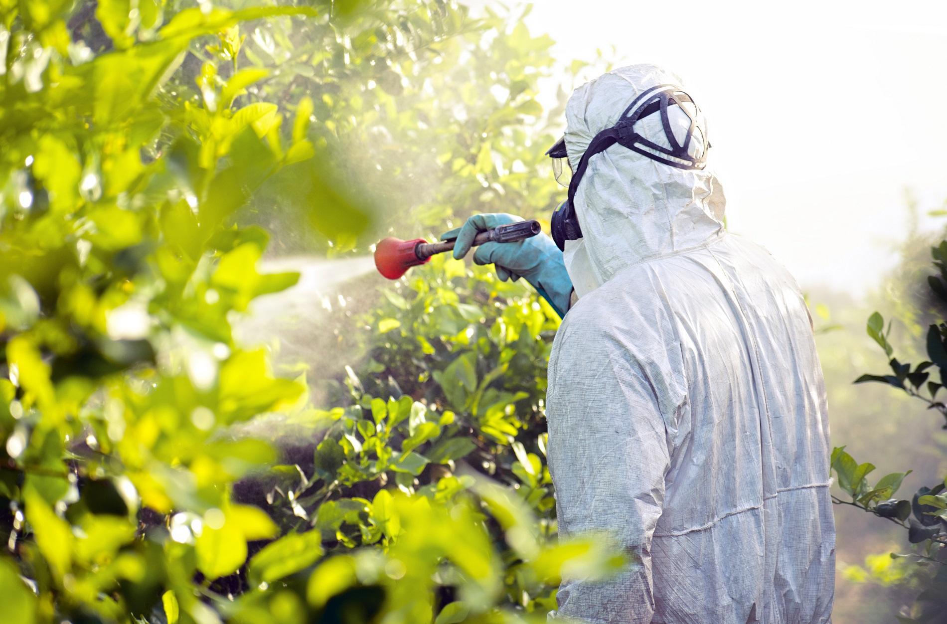 Buenas prácticas agrícolas: Ajuste de equipos de aplicación