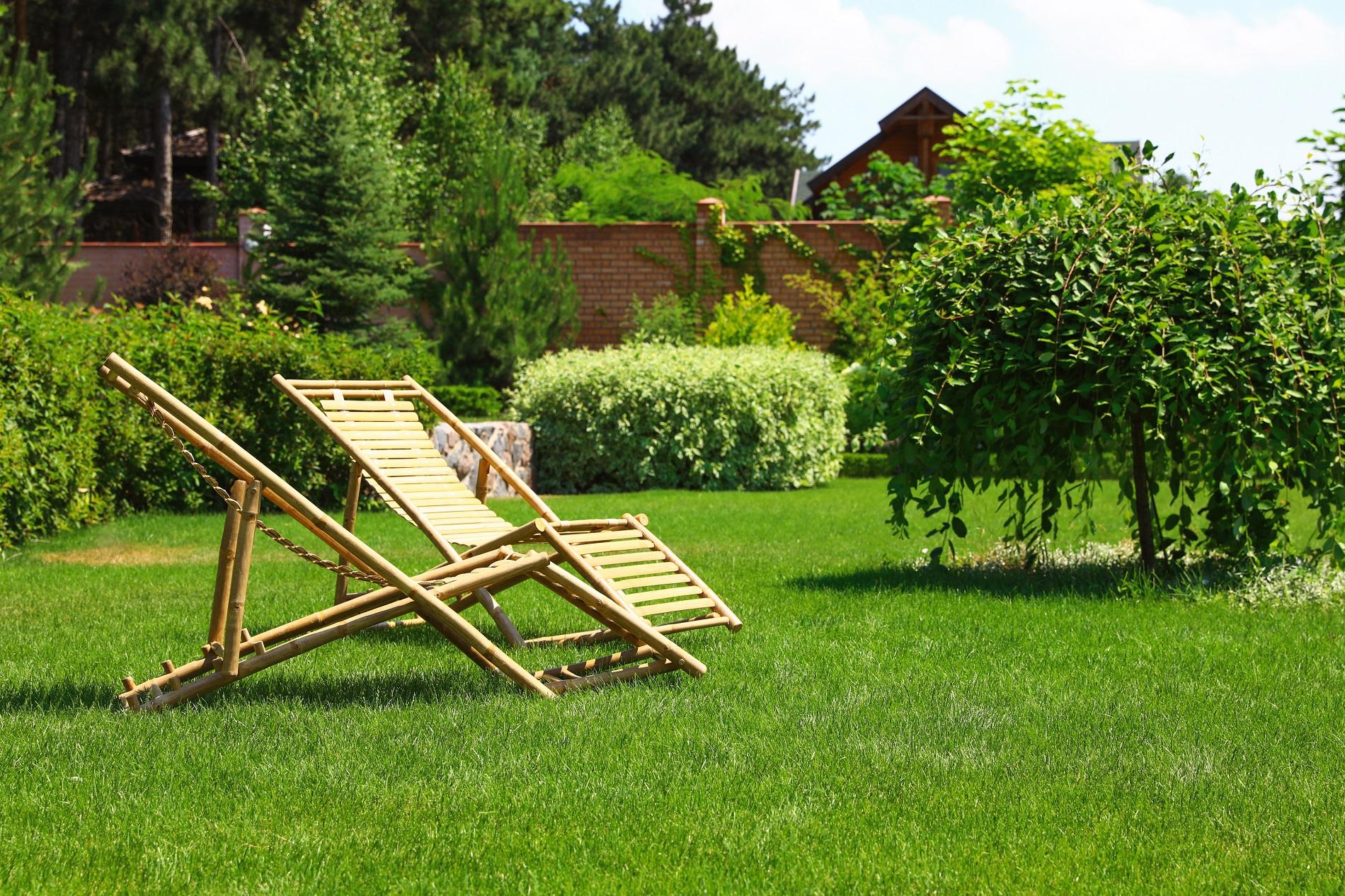 6 consejos prácticos para que tu jardín luzca sus mejores galas en primavera