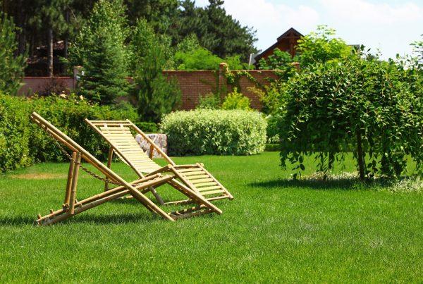 jardín áreas verdes sanidad vegetal protección de plantas aepla