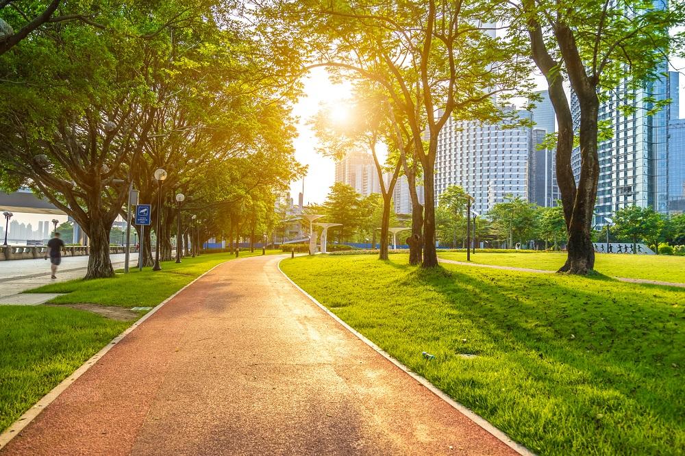 ¿Cómo avanzar hacia el desarrollo de ciudades más verdes?