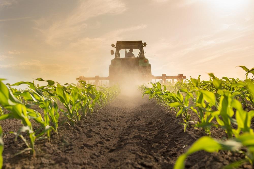 protección de cultivos sanidad vegetal agricultura tratamientos fitosanitarios alimentación desarrollo rural desperdicio alimentario aepla