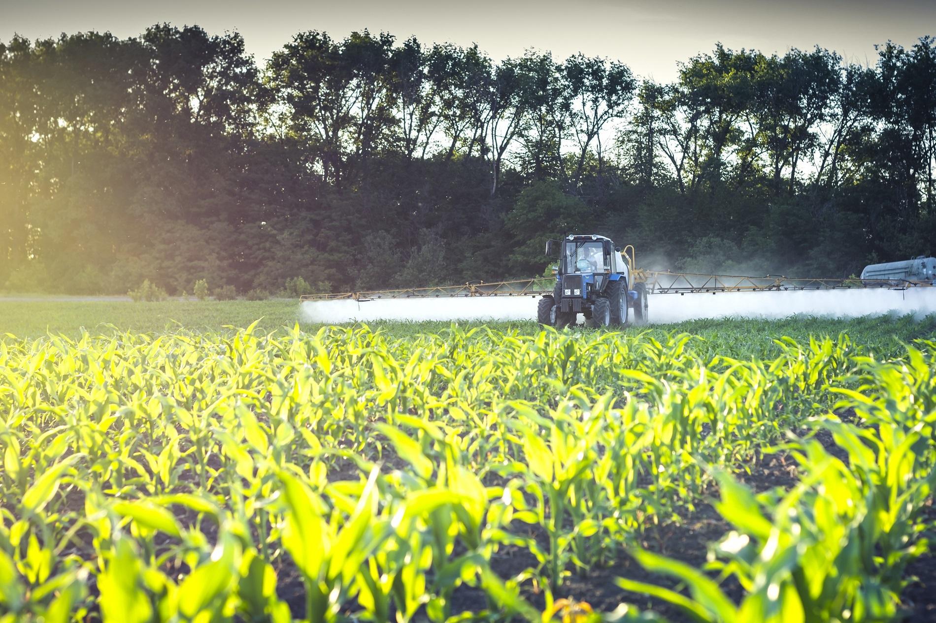 Buenas prácticas en el uso de fitosanitarios: durante la aplicación