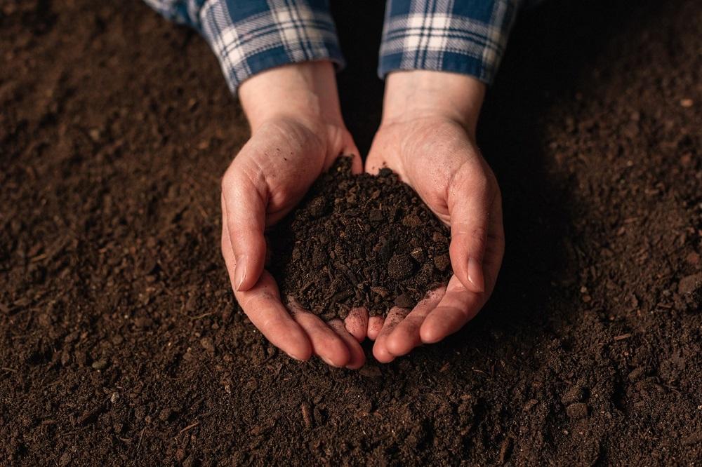 Tabla Munsell: Conoce más sobre las propiedades del suelo agrícola de tu parcela