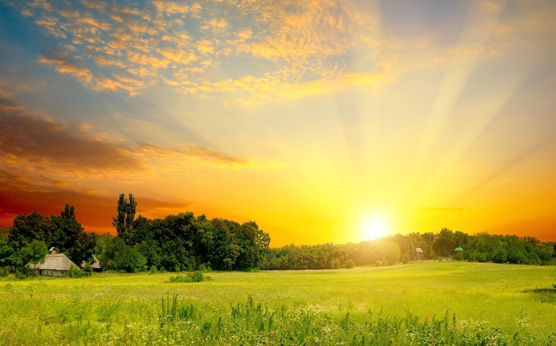 Presta atención al cuidado de tu suelo agrícola en verano