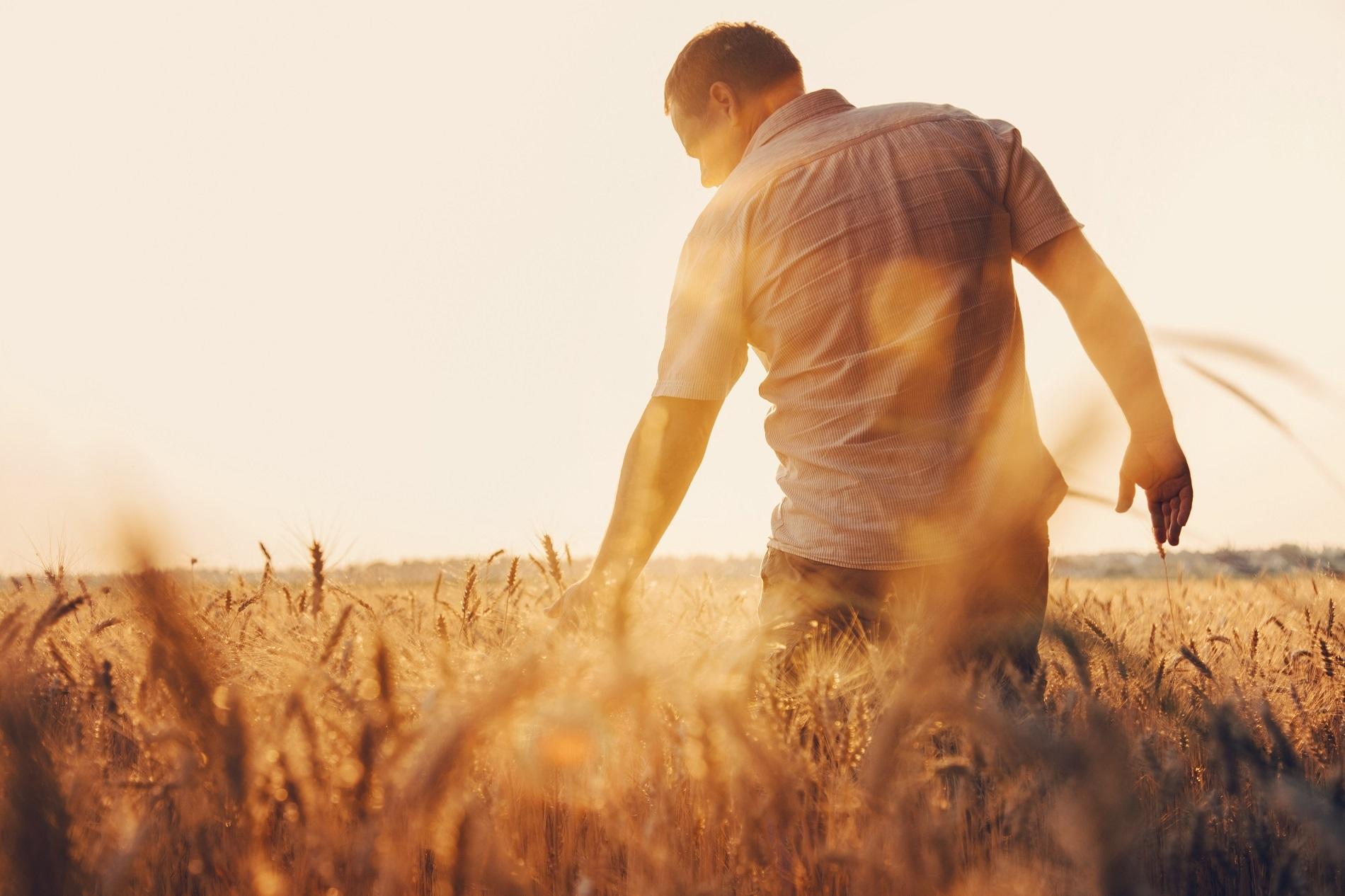 ¿Qué medidas de prevención debes tomar en tu trabajo agrícola durante el verano?