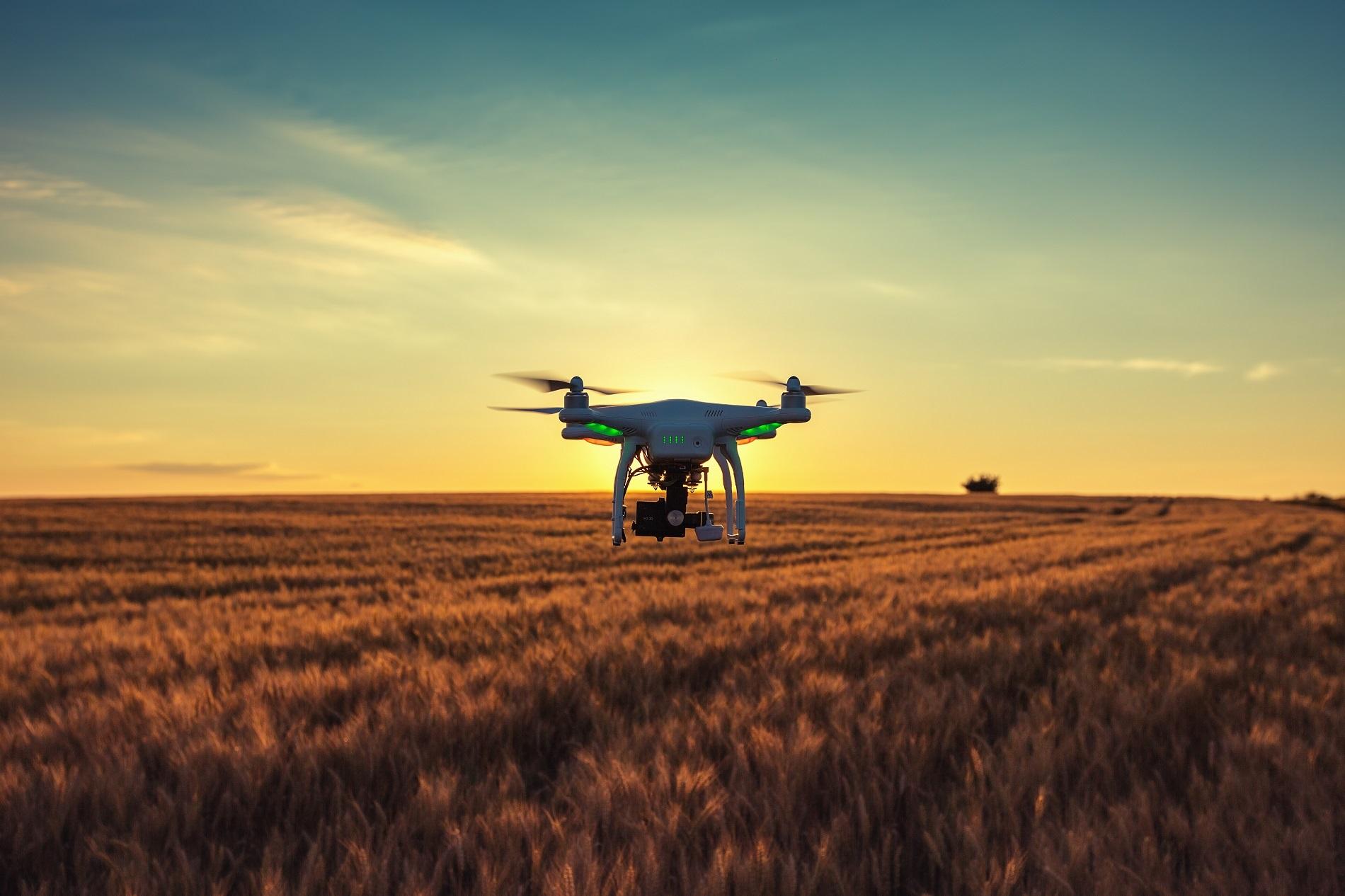 ¿Qué pueden aportar los drones y otros sistemas autónomos a la sanidad vegetal de tus cultivos?