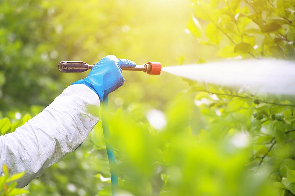 equipos de protección individual EPIs manos seguridad aplicación tratamientos fitosanitarios sanidad vegetal agricultura aepla