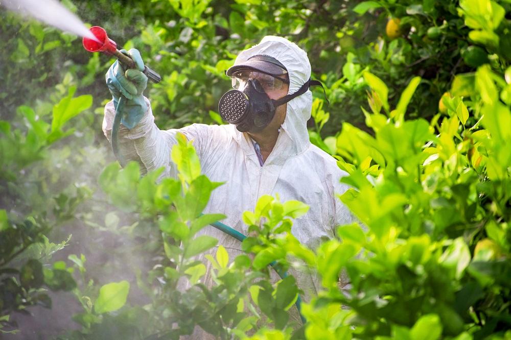 equipos de protección individual EPIs ojos protección ocular seguridad aplicación tratamientos fitosanitarios sanidad vegetal agricultura aepla