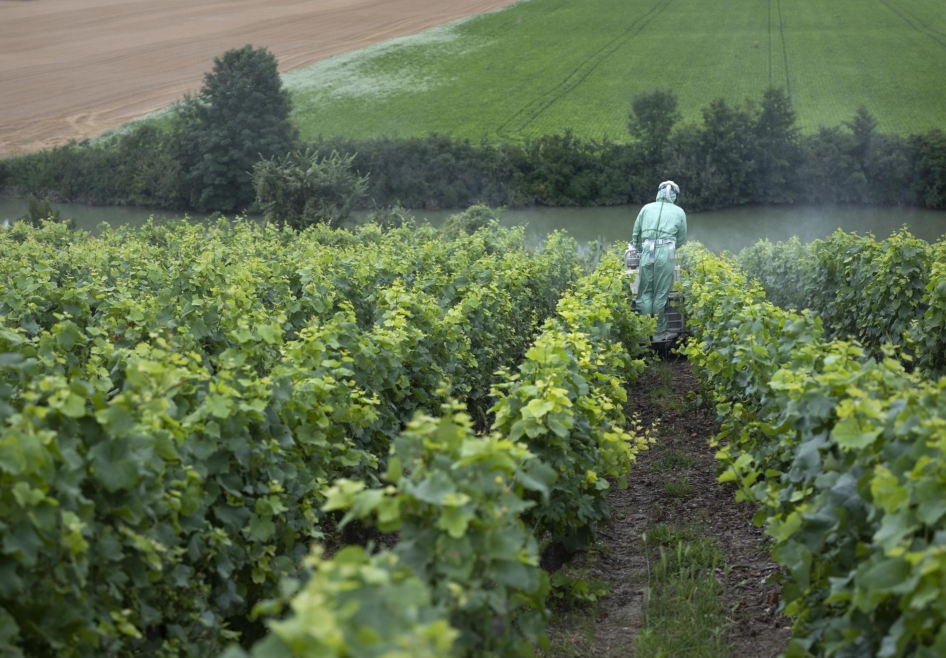 Buenas prácticas agrícolas: Limpieza de tus Equipos de Protección Individual (EPIs)