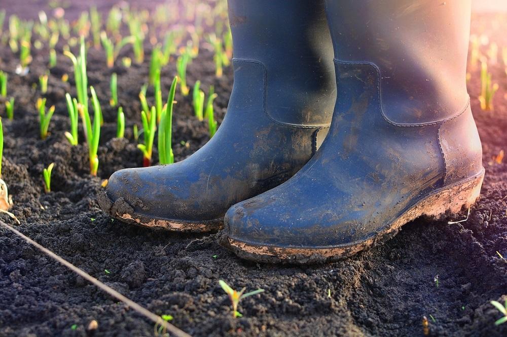 equipos de protección individual EPIs pies protección integral seguridad aplicación tratamientos fitosanitarios sanidad vegetal agricultura aepla
